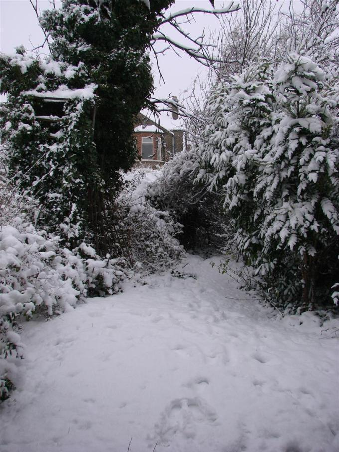 London snowfall in February 2009