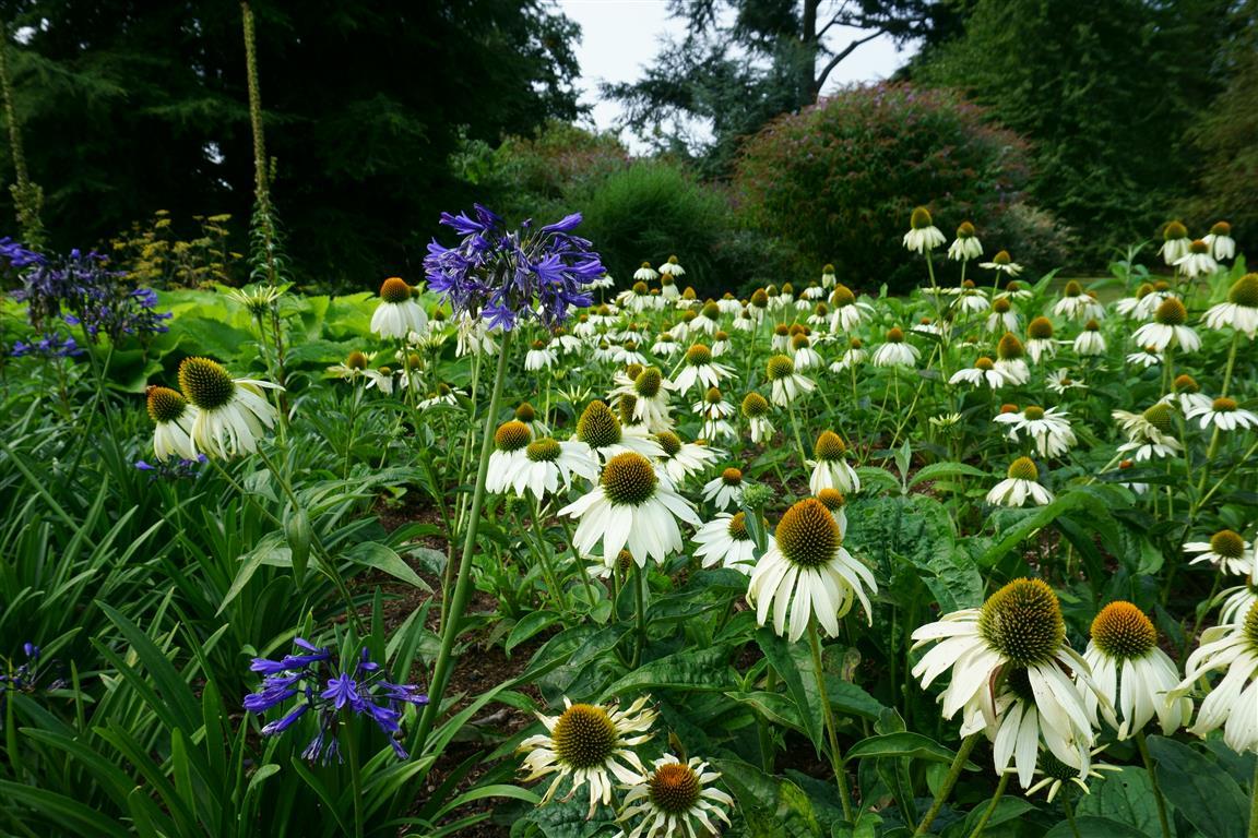 Visit to Kew Gardens